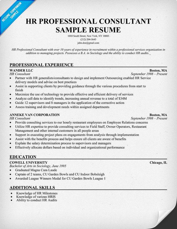 Resume Professional Summary objective and summary example Qa Consultant Resume Ui Developer Resume Safety Manager Resume