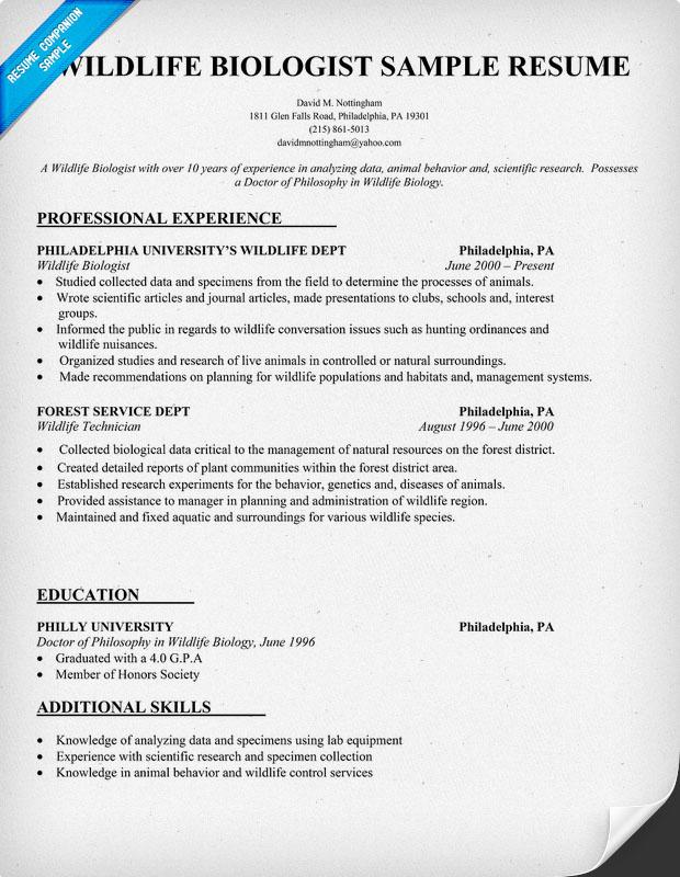 latest sample resume accounts receivable specialist resume sample