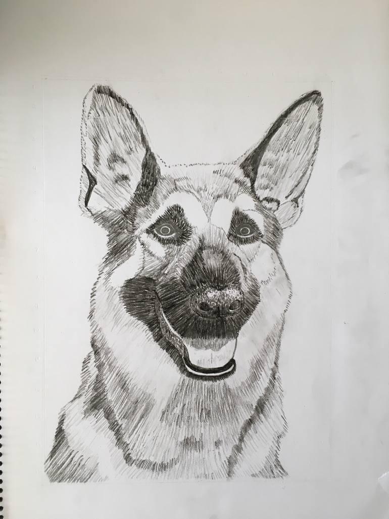 German Shepherd Drawing By Sapphire Taylor Saatchi Art