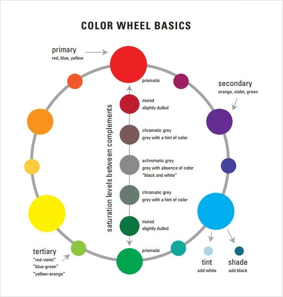 Number Names Worksheets  Blank Color Wheel Template  Free