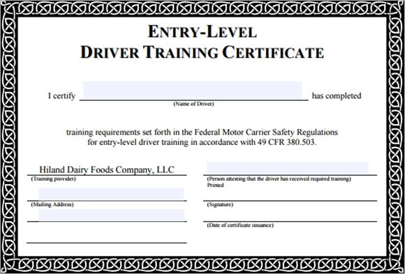 Driver Safety Certificates Templates