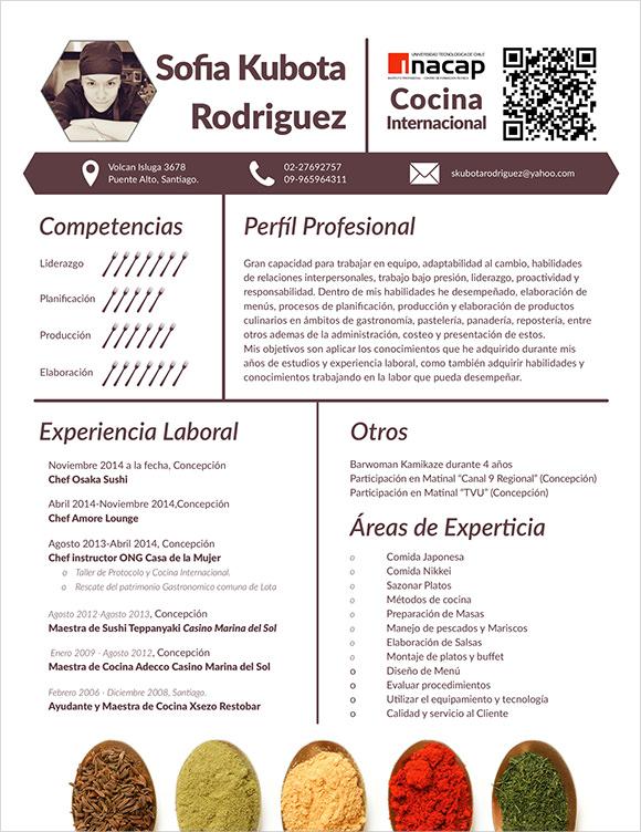 Executive Resume - Free CV Samples