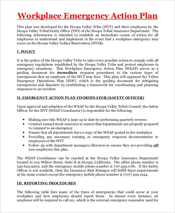 8 Sample Emergency Action Plan In Pdf Word