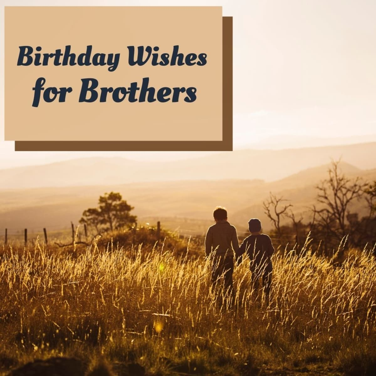 141 Birthday Wishes Texts And Quotes For Brothers Holidappy