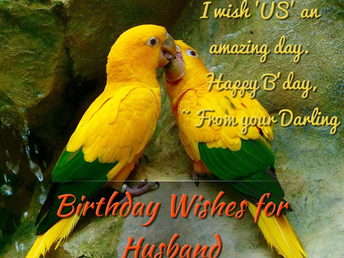 Funny Heartwarming Romantic And Teasing Birthday Wishes For Your Husband Holidappy