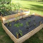 How To Build A Cedar Raised Garden Bed Dengarden Home And Garden