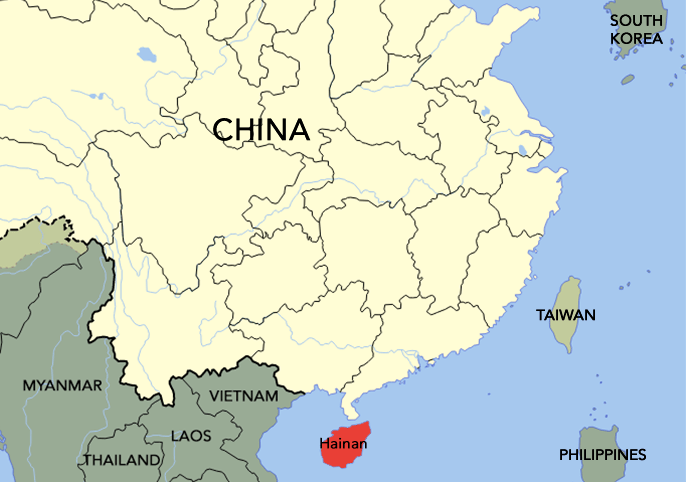 The Hainanese people came from the island of Hainan.