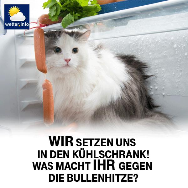 Unsere Weisheit Des Tages Thuringen24 Fachhochschule