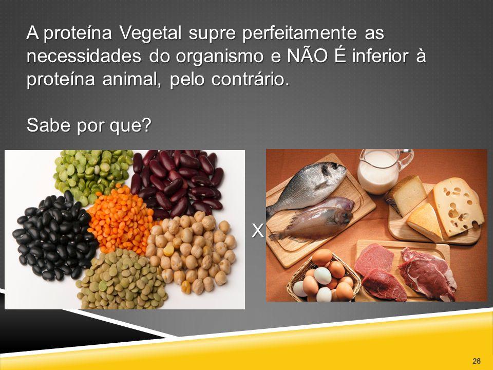Resultado de imagem para imagens sobre a contaminação da proteína animal