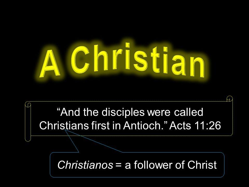 Image result for antioch christian
