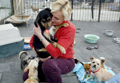 Monika Biernacki cuddles Jericho, whose owner tried to drown him, at her animal shelter, Monika?s Doggie Rescue in Ingleside.