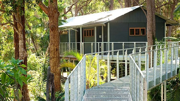 Diamond Waters Tree House Retreat
