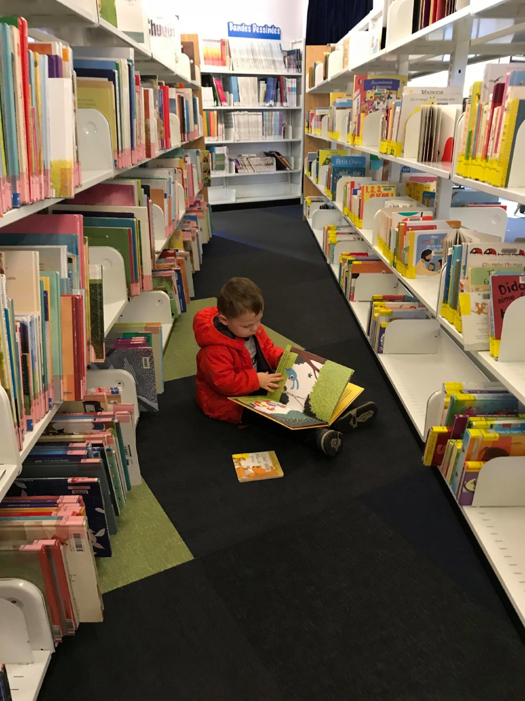 nos raisons d aller a la bibliotheque