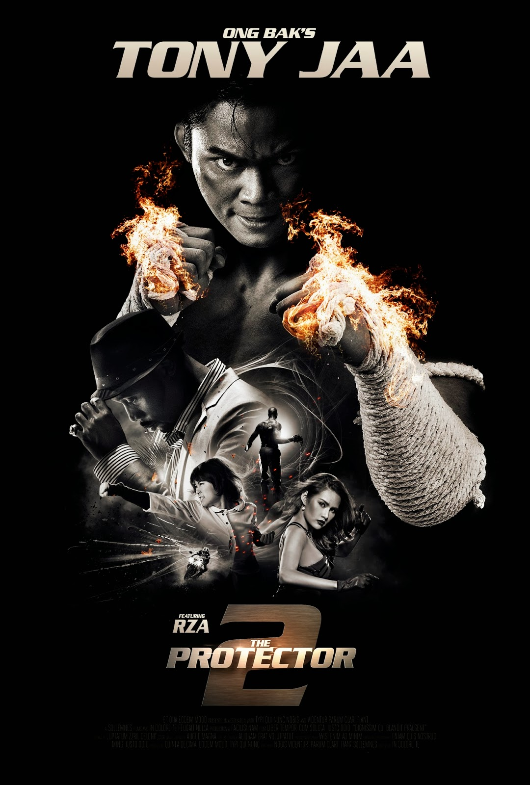 martial arts film the protector