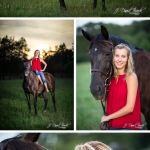 Senior Savannah Portraits In Virginia Horse Country J David Buerk Photography