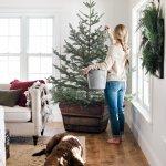 Farmhouse Christmas Decorating Ideas Boxwood Ave