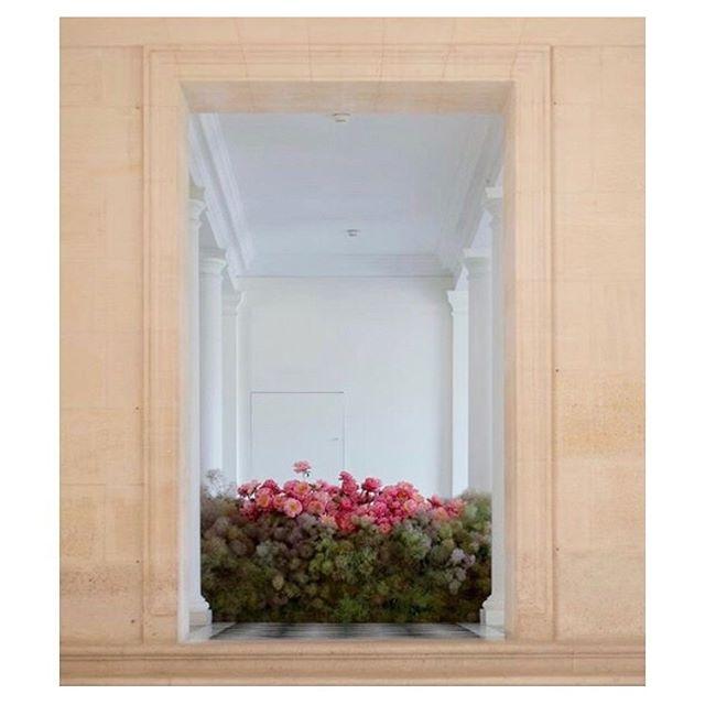 Midweek soothe. Floral installation by @castorfleuriste #cqinspiration #florals #floralinstallations #paris #museeartdecoratif #anakhouri #fleur #peonies #castorfleuriste #artinstallation #soothe #contemporaryart #musee