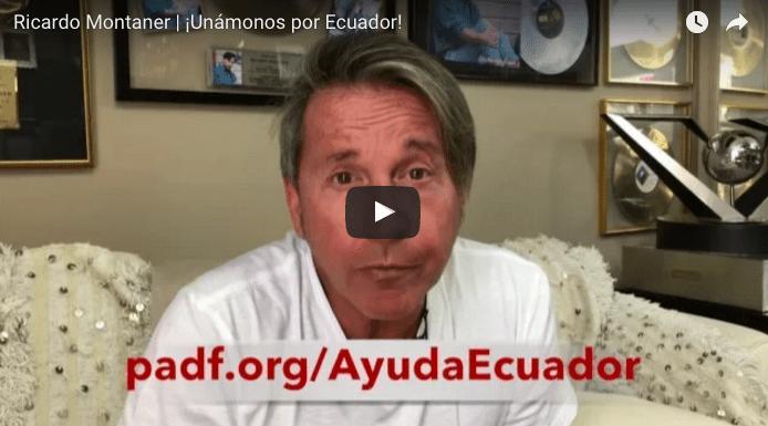 News Pan American Development Foundation Padf
