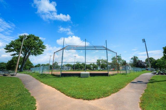 11 City of Auburn y-field.JPG