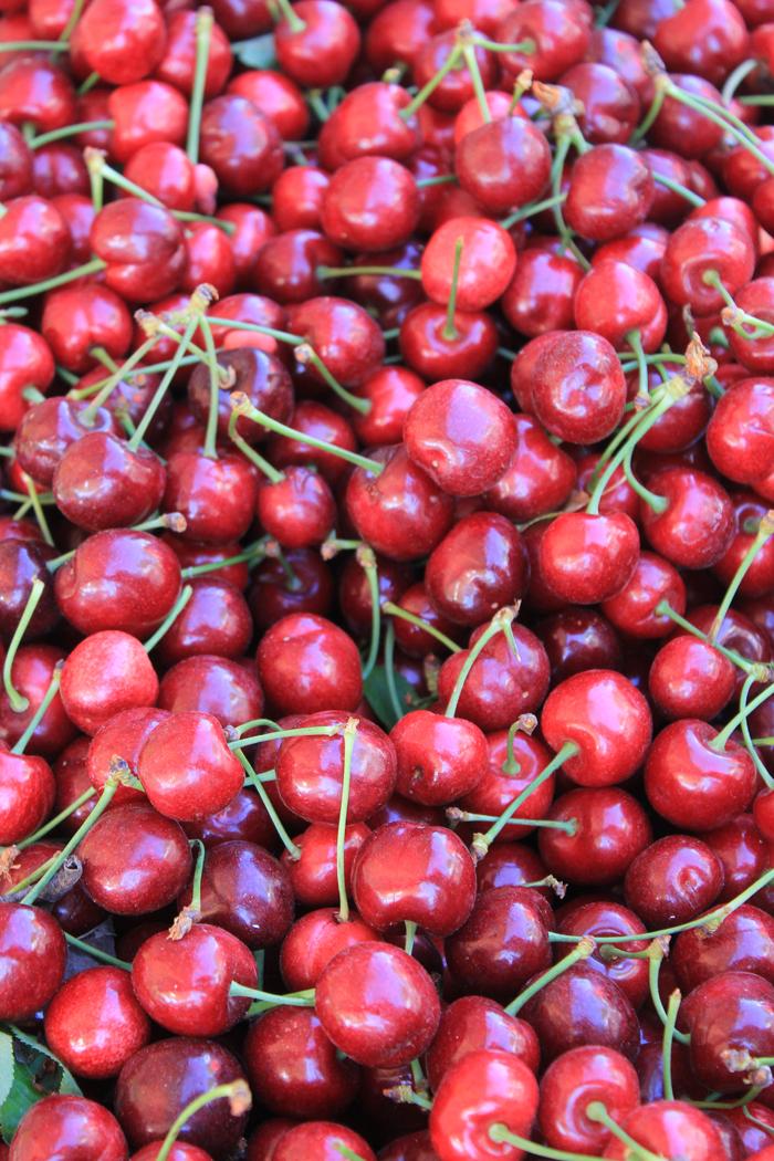 Fresh Market Chestnut Hill Hours