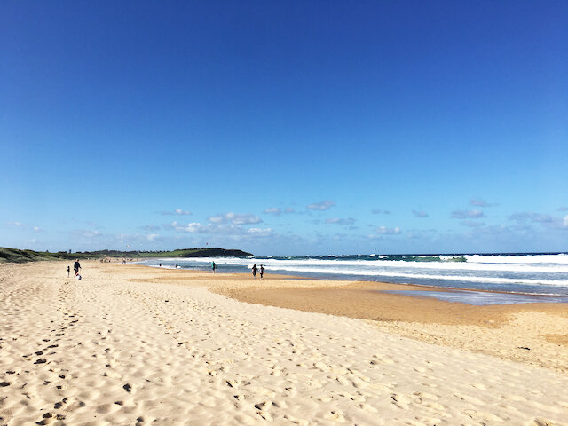 Dee Why Beach - Photo Credit: @busycitykids