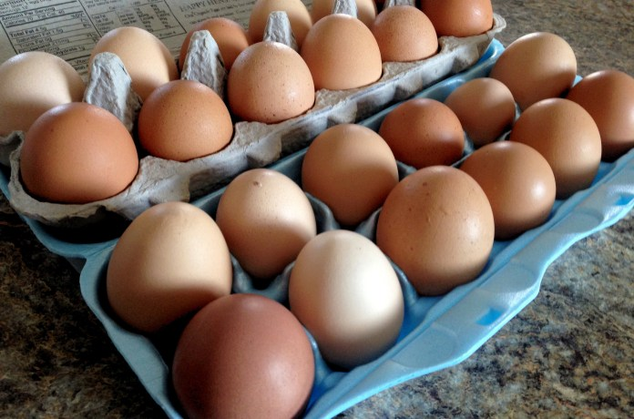 While UConn still serves a decent quantity of eggs in the dining halls, it's noticeable that there are fewer options than usual. (ninacoco/Flickr)