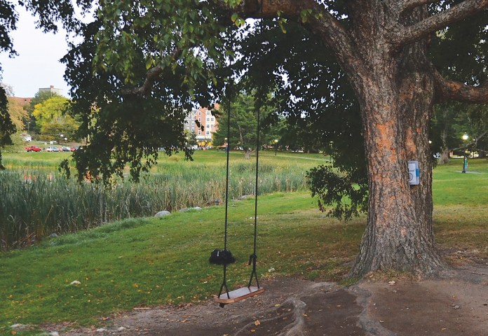 In this photo, the swing near Mirror Lake on the UConn campus is pictured.A new journal placed by Counseling and Mental Health Services (CMHS) near the swing at Mirror Lake has prompted many UConn students to open up and share their milestones, struggles and personal thoughts. (Amar Batra/The Daily Campus)