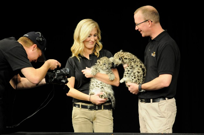 """Children and families went wild for Jack Hanna, television host, conservationist and wildlife educator, at his """"Into the Wild: Live"""" show at the Jorgensen Center for the Performing Arts in Storrs, Connecticut on Sunday, Oct. 25, 2015.(Amar Batra/The Daily Campus)"""