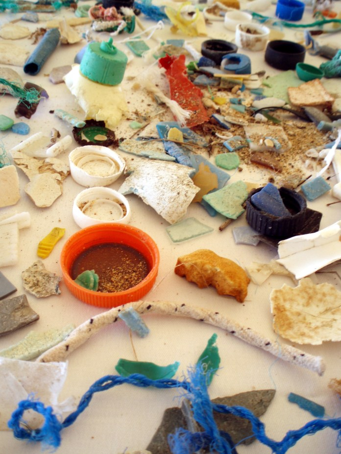 Microplastics recently have been commercially used in products, such as facial scrubs or toothpastes. However, many companies producing these products do not warn consumers of the potential danger.(NOAA/Creative Commons Flickr)