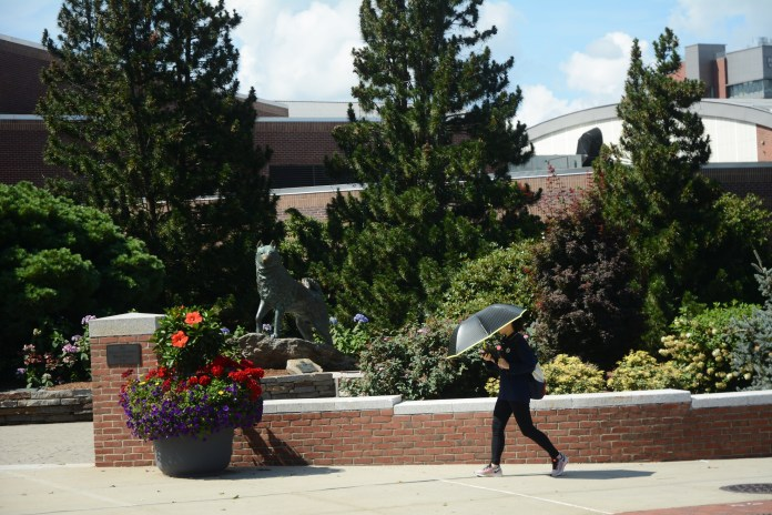 The current heat wave is expected to last until Friday (Zoe Jensen/The Daily Campus)