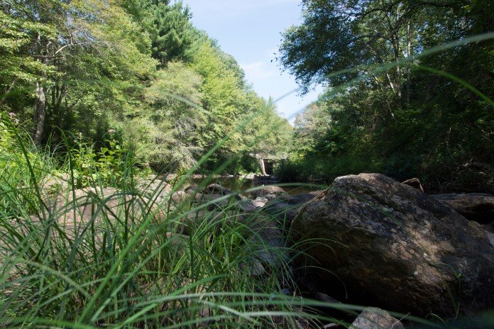 The Fenton River, located in the UConn Forest, is a large water source for the University's infrastructure (Nicholas Hampton/The Daily Campus)
