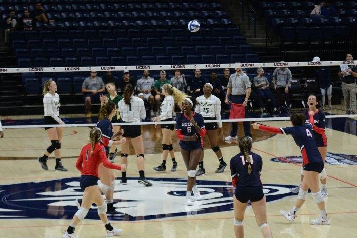 FILE- UConn Volleyball celebrates after a point during a game against USF on Nov. 3, 2018. (Judah Shingleton/ The Daily Campus)