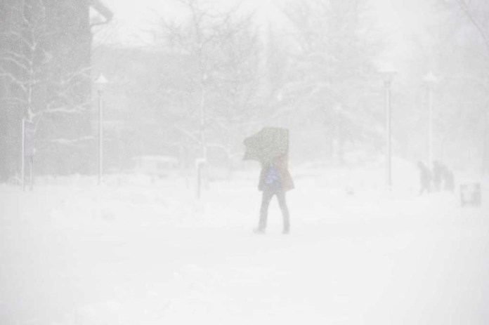 A student attempts to brave the brutal Storrs blizzard on Feb. 2, 2016. (File photo/The Daily Campus)