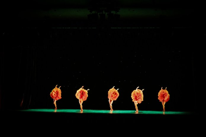 The contemporary dance group Momix performs in Jorgensen on Wednesday night. It was the group's eleventh time performing at UConn. (Maggie Chafouleas/The Daily Campus)