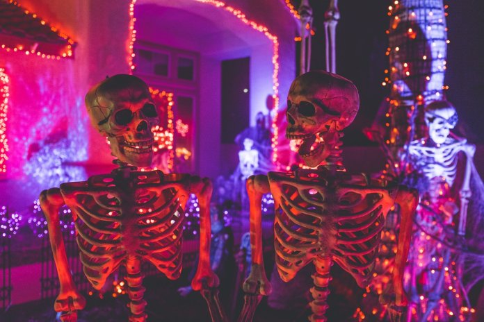 Make sure to buy some decals or streamers to decorate your front door as a ghoulish greeting for guests, like some cobwebs, jack-o-lanterns or even toilet paper for a mummified look. Deck out the party area with any decorations of your choosing, such as big spiders to go with your cobwebs, fake candelabras and colored string lights.  Photo by NeONBRAND from Unsplash.com