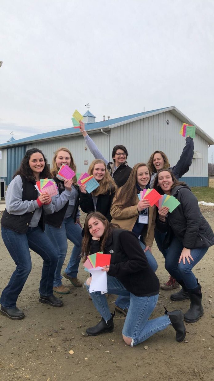 The Block and Bridle club at UConn learns about beef cattle, dairy cattle, chickens, sheep, pigs, and horses. The club's major event is the Little international Livestock Show.  Photos courtesy of Block and Bridle