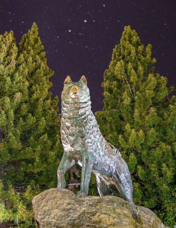 The Husky Statue, last years  undergraduate catalog  cover photo by Jack Baumgartel '21 (ENGR)