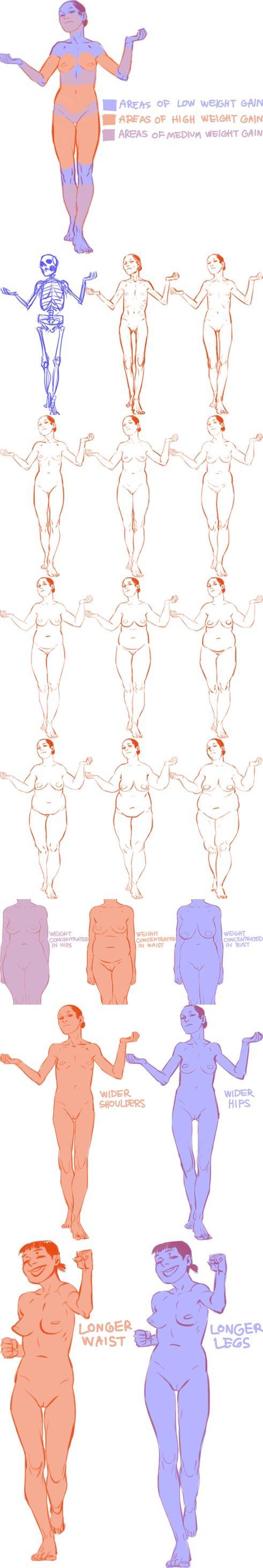 Character Anatomy | Female
