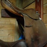 Tips For Worry Free Tack Storage Sterling Essentials