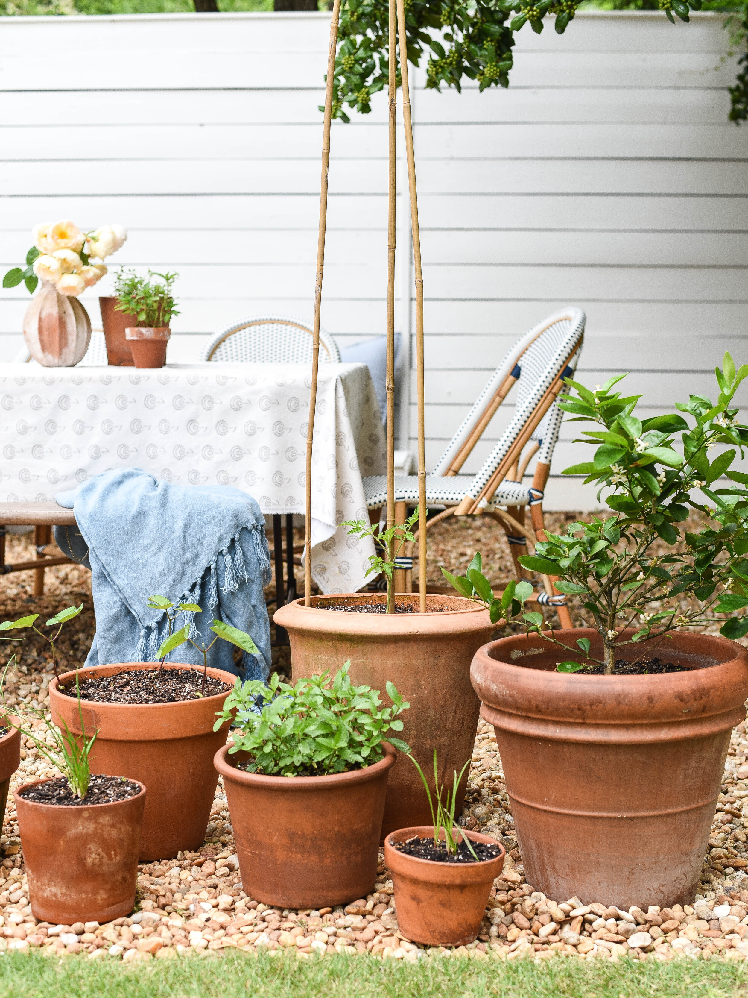 rock patio container garden by
