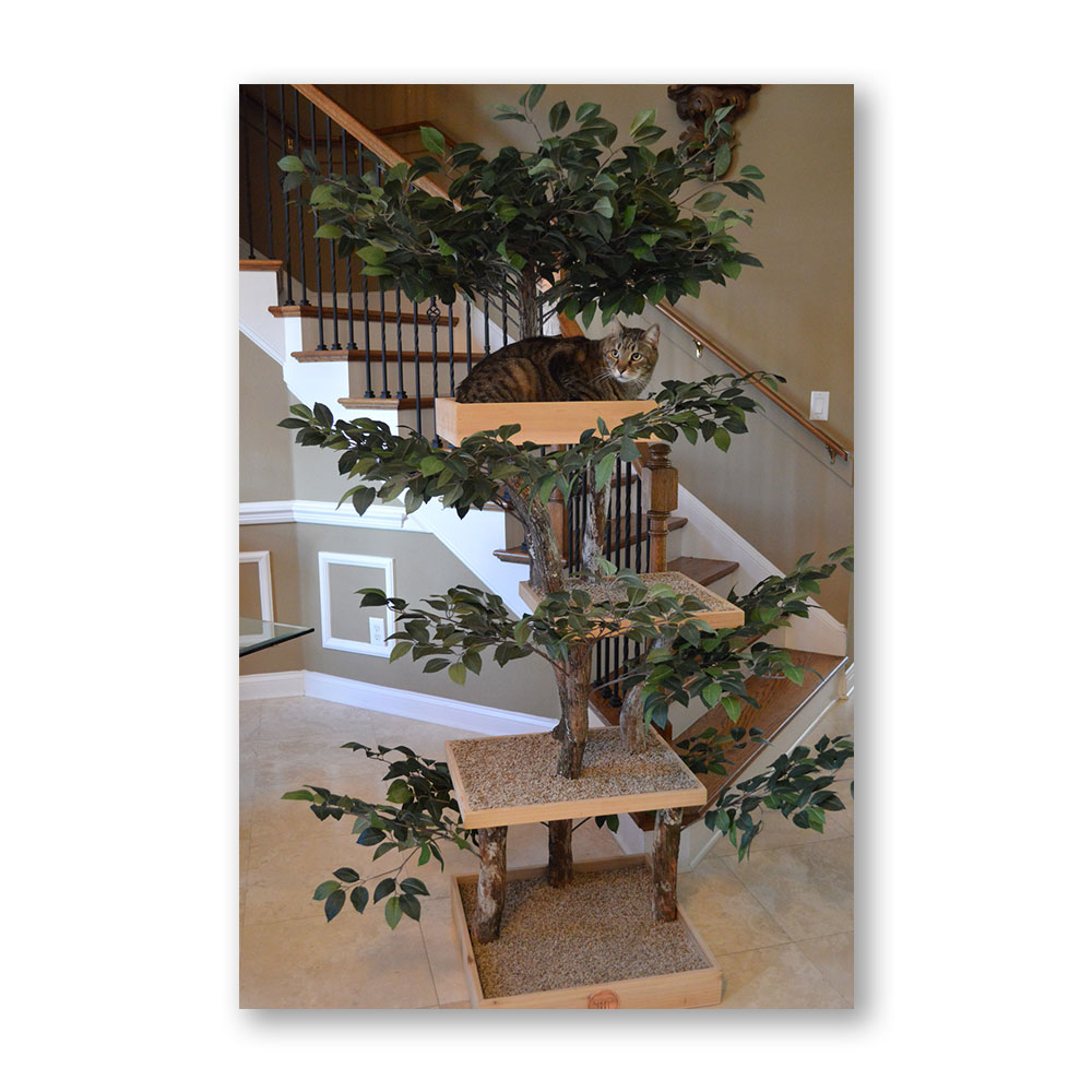 Indoor Cat Trees Shop Moderncat Com