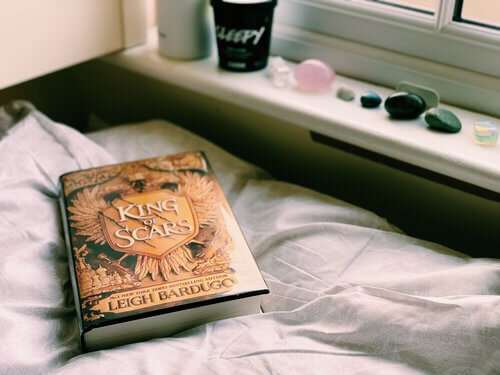 King of Scars by Leigh Bardugo sits on a pillow next to a window with stones sitting on the windowsill.