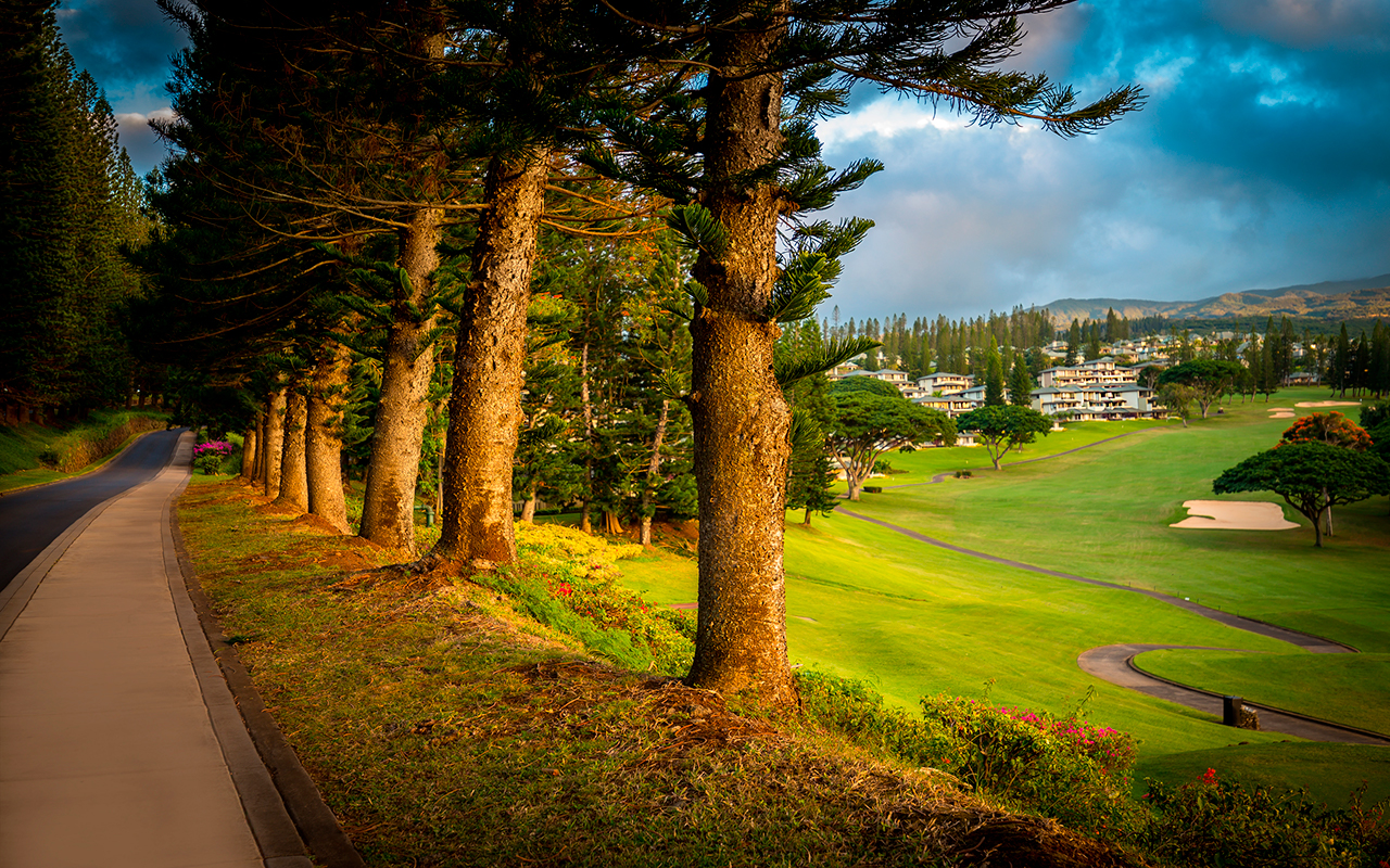 Village World Fees Green Golf