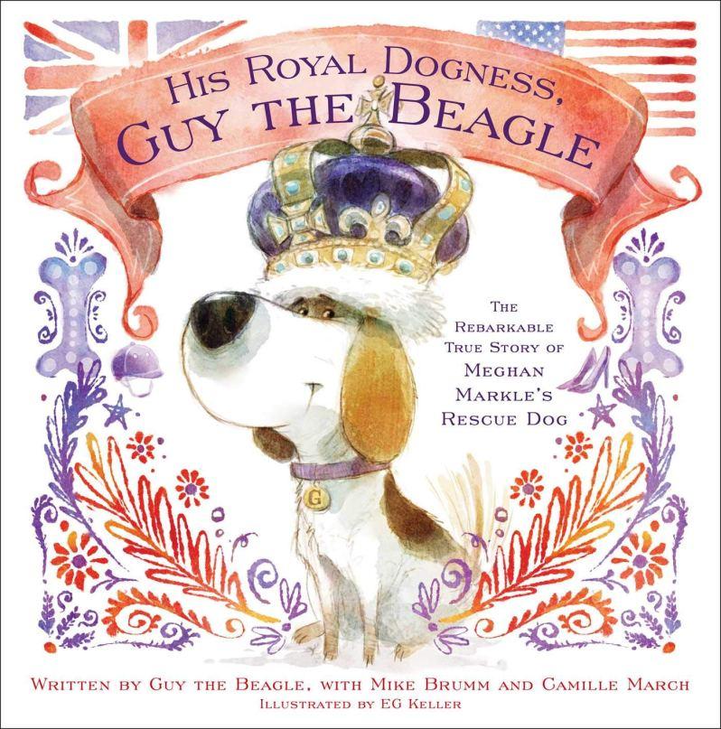 "Der Beagle von Herzogin Meghan hat nun ein eigenes Buch. namens """" His Royal Dogness, Guy the Beagle: The Rebarkable True Story of Meghan Markle's Rescue Dog "". ©PR"