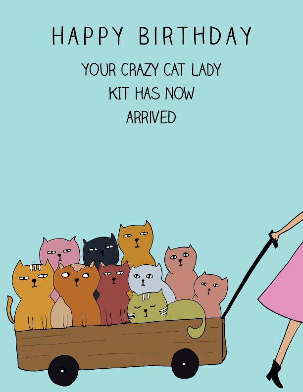 Crazy Cat Lady Hello Little Sam