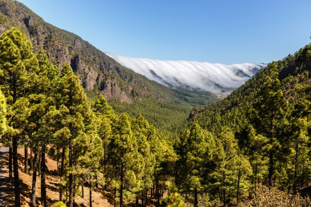 Los 15 Parques Nacionales de España - Caldera de Taburiente (La Palma) | Foto: Dreamstime