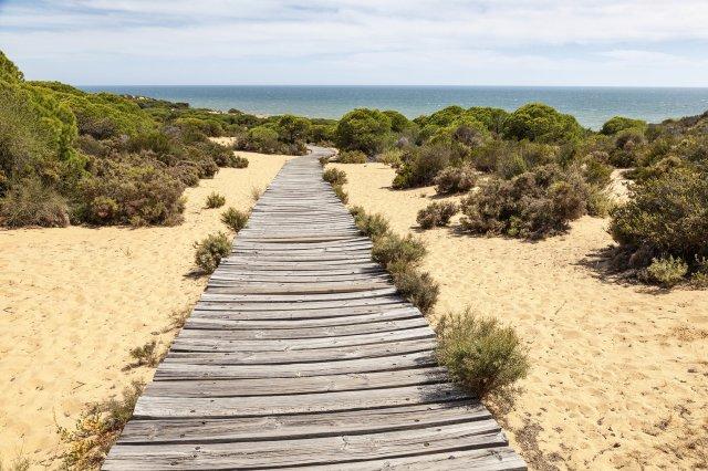 Los 15 Parques Nacionales de España - Doñana | Foto: Dreamstime