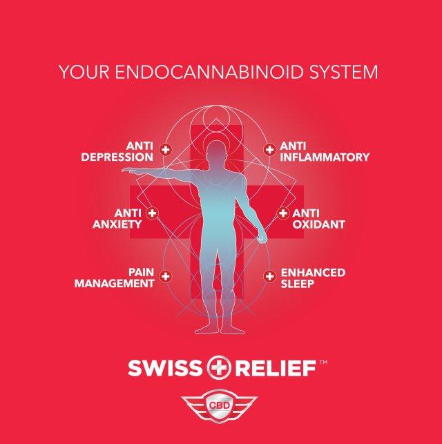 Swiss_ Relief.jpg