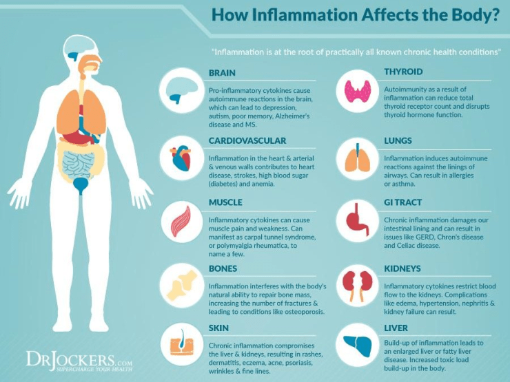 How inflamation Affect the Body.png