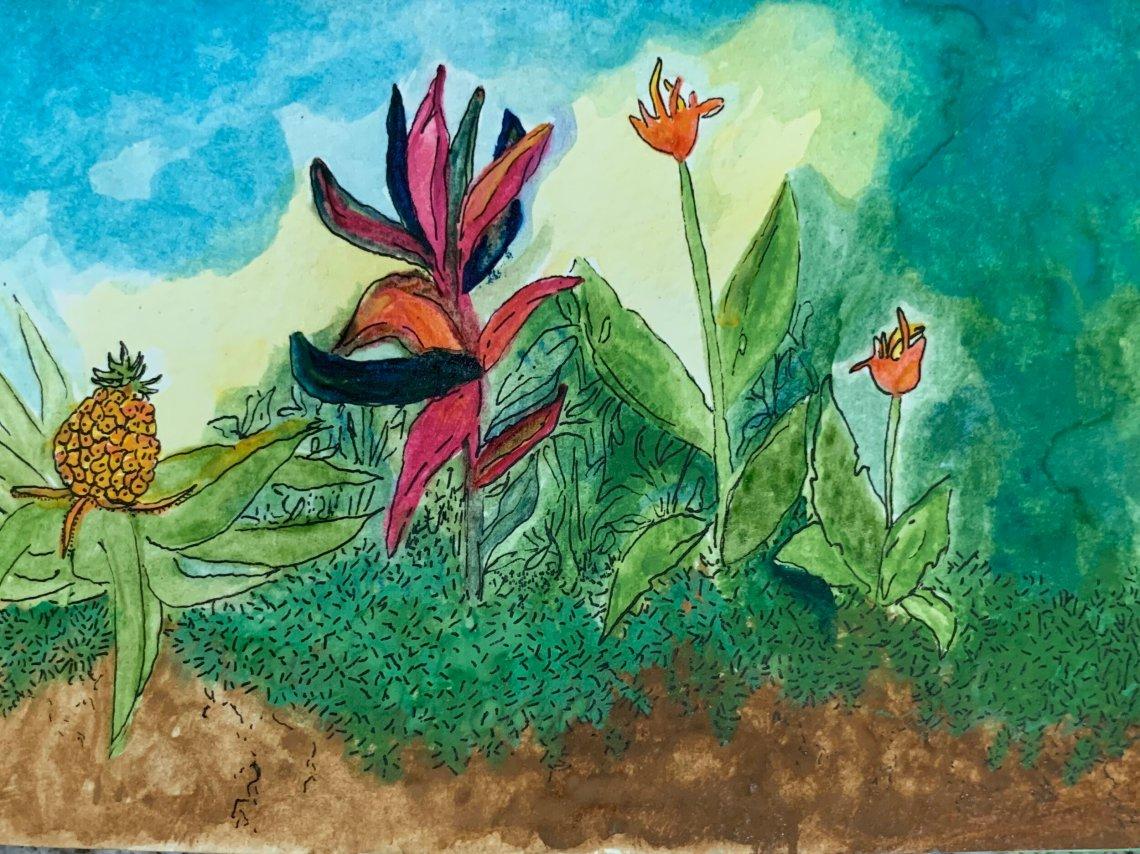 """""""Eran baños con flores, cortezas de árboles, plantas aromáticas….""""  Ilustración de Ani Ventocilla King"""